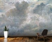 Study of Cumulus Clouds, 1822 (oil on paper laid on canvas) wall mural kitchen preview