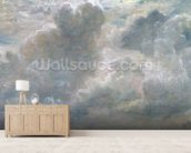 Study of Cumulus Clouds, 1822 (oil on paper laid on canvas) wall mural living room preview