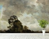 Landscape at Hampstead, Tree and Storm Clouds, c.1821 (oil on paper laid down on panel) wallpaper mural in-room view