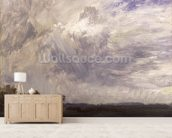Landscape with Grey Windy Sky, c.1821-30 (oil on paper laid down on millboard) wall mural living room preview