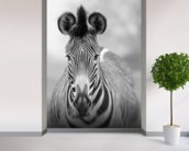 Zebra Pose mural wallpaper in-room view