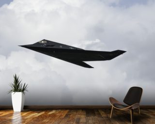 Stealth Fighter mural wallpaper