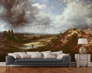 Branch Hill Pond, Hampstead Heath, 1828 (oil on canvas) wall mural