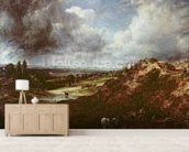 Branch Hill Pond, Hampstead Heath, 1828 (oil on canvas) wall mural living room preview