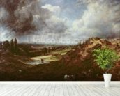 Branch Hill Pond, Hampstead Heath, 1828 (oil on canvas) wall mural in-room view