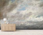 Cloud Study, c.1821 (oil on paper laid on card) wall mural living room preview