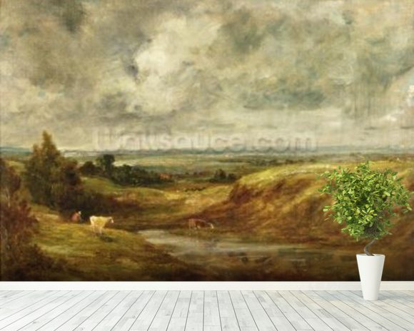 Hampstead Heath, c.1825-30 (oil on canvas) wallpaper mural room setting