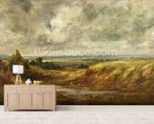 Hampstead Heath, c.1825-30 (oil on canvas) wallpaper mural living room preview