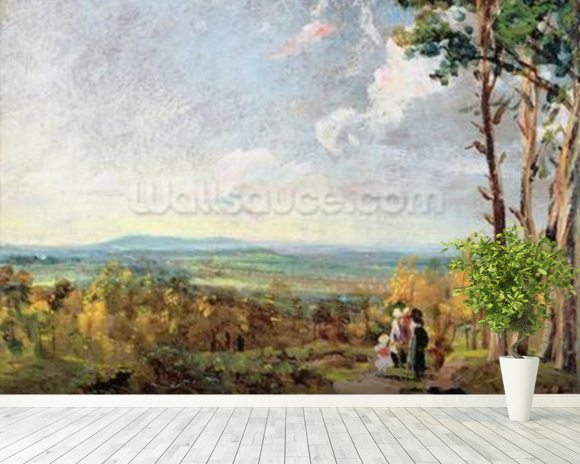 Hampstead Heath Looking Towards Harrow, 1821 (oil on paper laid on canvas) wall mural room setting
