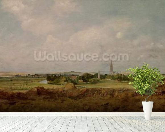 View of Salisbury (oil on canvas) wall mural room setting