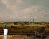View of Salisbury (oil on canvas) wall mural kitchen preview