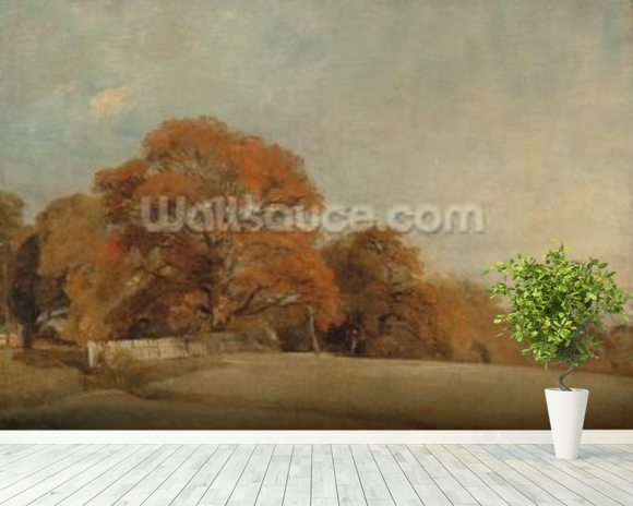 An Autumnal Landscape at East Bergholt, c.1805-08 (oil on canvas) wall mural room setting