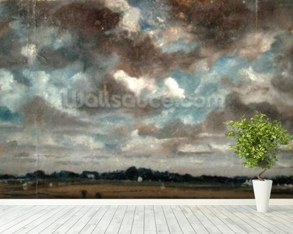 Extensive Landscape with Grey Clouds, c.1821 (oil on paper on canvas) wallpaper mural room setting