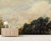 Cloud Study with Trees, 1821 (oil on paper laid down on board) wallpaper mural living room preview