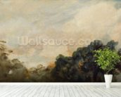 Cloud Study with Trees, 1821 (oil on paper laid down on board) wallpaper mural in-room view