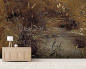 Rushes by a Pool, c.1821 (oil on paper on board) mural wallpaper living room preview