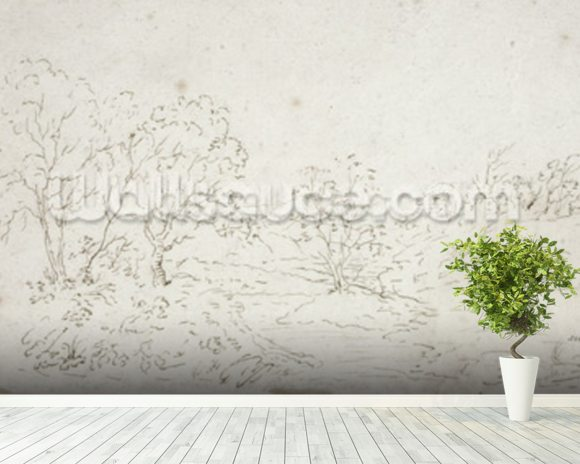 Landscape: a stream running between trees (drawing) wall mural room setting
