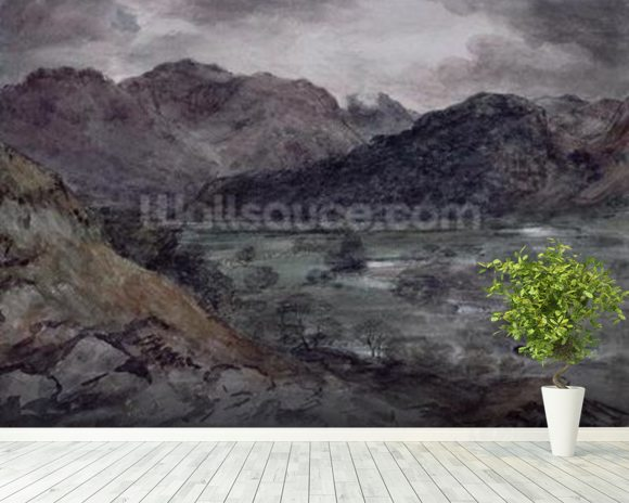 View in Borrowdale (w/c on paper) wall mural room setting