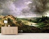 Hampstead Heath mural wallpaper living room preview