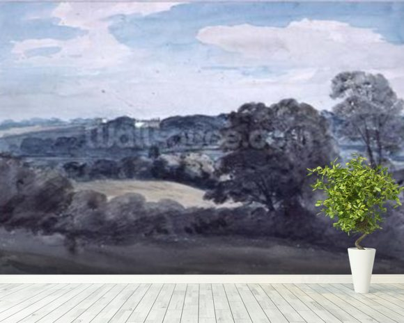 Landscape with Buildings in the distance (watercolour) mural wallpaper room setting