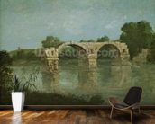 The Bridge at Ambrussum (oil on canvas) wall mural kitchen preview
