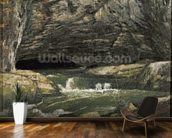 The Source of the Loue or La Grotte Sarrazine (oil on canvas) wallpaper mural kitchen preview