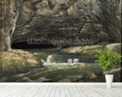 The Source of the Loue or La Grotte Sarrazine (oil on canvas) wallpaper mural in-room view
