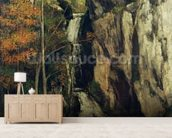 The Chasm at Conches, 1864 (oil on canvas) wallpaper mural living room preview