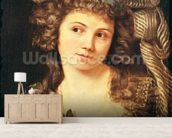 Portrait of a young woman in the style of Labille-Guiard (oil on canvas) wallpaper mural living room preview