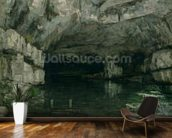The Grotto of the Loue, 1864 (oil on canvas) wall mural kitchen preview