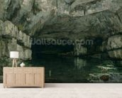 The Grotto of the Loue, 1864 (oil on canvas) wall mural living room preview