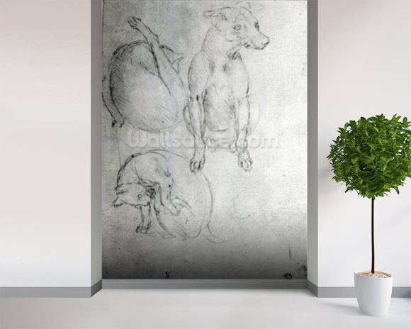 Study of a dog and a cat, c.1480 (metalpoint on paper) wallpaper mural room setting