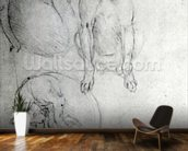 Study of a dog and a cat, c.1480 (metalpoint on paper) wallpaper mural kitchen preview