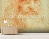 Self portrait, c.1512 (red chalk on paper) wall mural living room preview