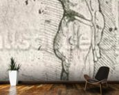 Anatomical Study (pen and ink on paper) (b/w photo) wallpaper mural kitchen preview