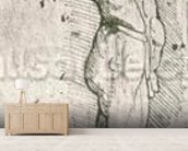 Anatomical Study (pen and ink on paper) (b/w photo) wallpaper mural living room preview