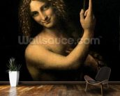 St. John the Baptist, 1513-16 (oil on canvas) wall mural kitchen preview