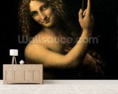 St. John the Baptist, 1513-16 (oil on canvas) wall mural living room preview