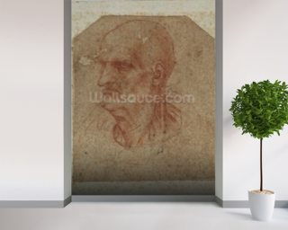 Head of a beardless old man, left profile (red chalk on paper) mural wallpaper