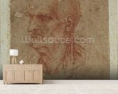 Head of a beardless old man, left profile (red chalk on paper) mural wallpaper living room preview