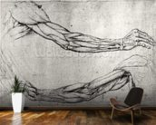 Study of Arms (pen & ink on paper) wall mural kitchen preview