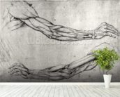Study of Arms (pen & ink on paper) wall mural in-room view