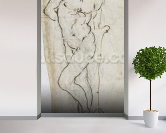 Study of St. Sebastian, 1480-81 (pen & ink over pencil on paper) mural wallpaper room setting