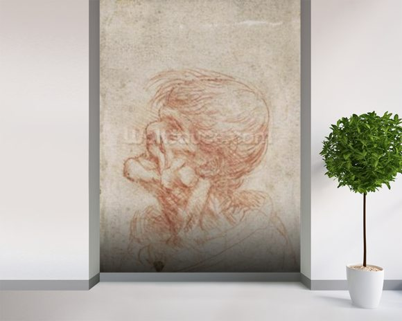 Caricature Head Study of an Old Man, c.1500-05 (red chalk on paper) wallpaper mural room setting