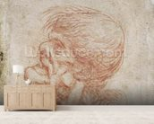 Caricature Head Study of an Old Man, c.1500-05 (red chalk on paper) wallpaper mural living room preview