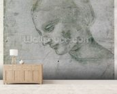 Head of a Young Woman or Head of the Virgin, c.1490 (silverpoint on paper) wall mural living room preview