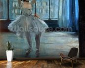 Dancer in Front of a Window (Dancer at the Photographers Studio) c.1874-77 (oil on canvas) wall mural kitchen preview