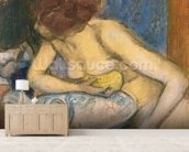 The Toilet, 1897 (pastel) mural wallpaper living room preview