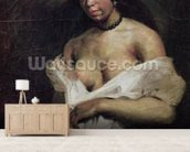 A Mulatto Woman, c.1821-24 (oil on canvas) wallpaper mural living room preview