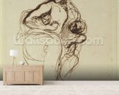 Medea, before 1838 (pen & ink on paper) mural wallpaper living room preview